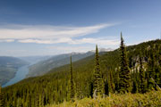 View of the Columbia River from the summit of Mount Revelstoke, BC